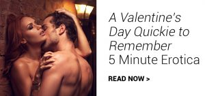 a valentine's day quickie to remember - 5 minute erotica